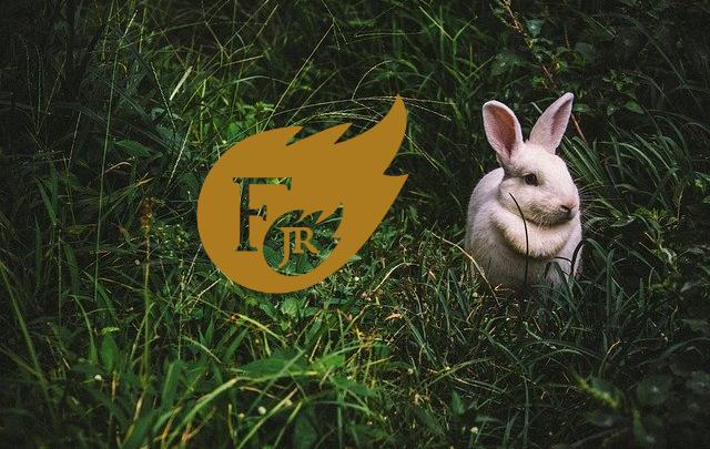 6 #SłuchajScenariusz Kocyk króliczka